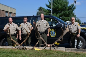 Elk poaching case