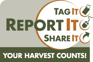 Your Harvest Counts logo RGB vertical