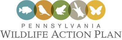 State_Wildlife_Action_Plan_logo500