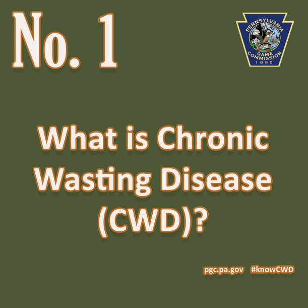 CWD Fact 1
