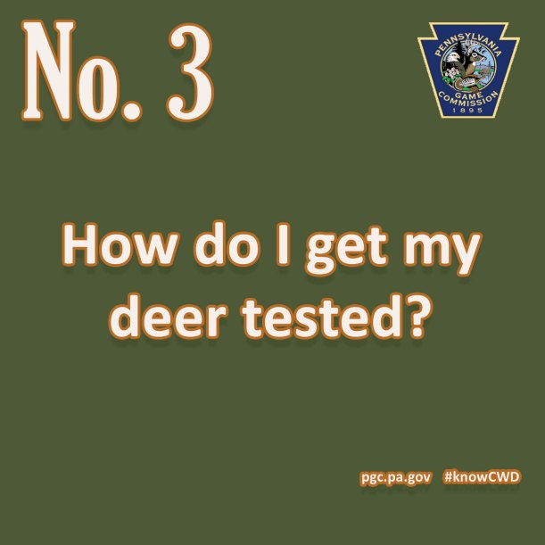 CWD Fact 3.jpg