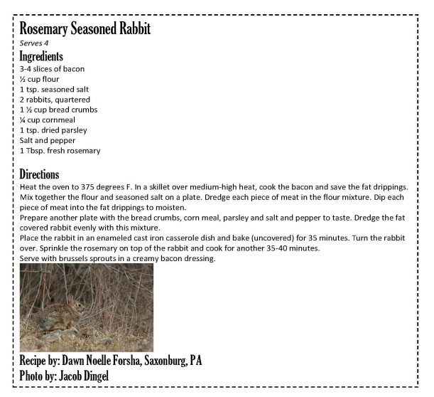 Rosemary Seasoned Rabbit - Oct. 24, 2018_Page_1