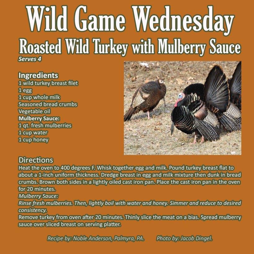 Roasted Wild Turkey