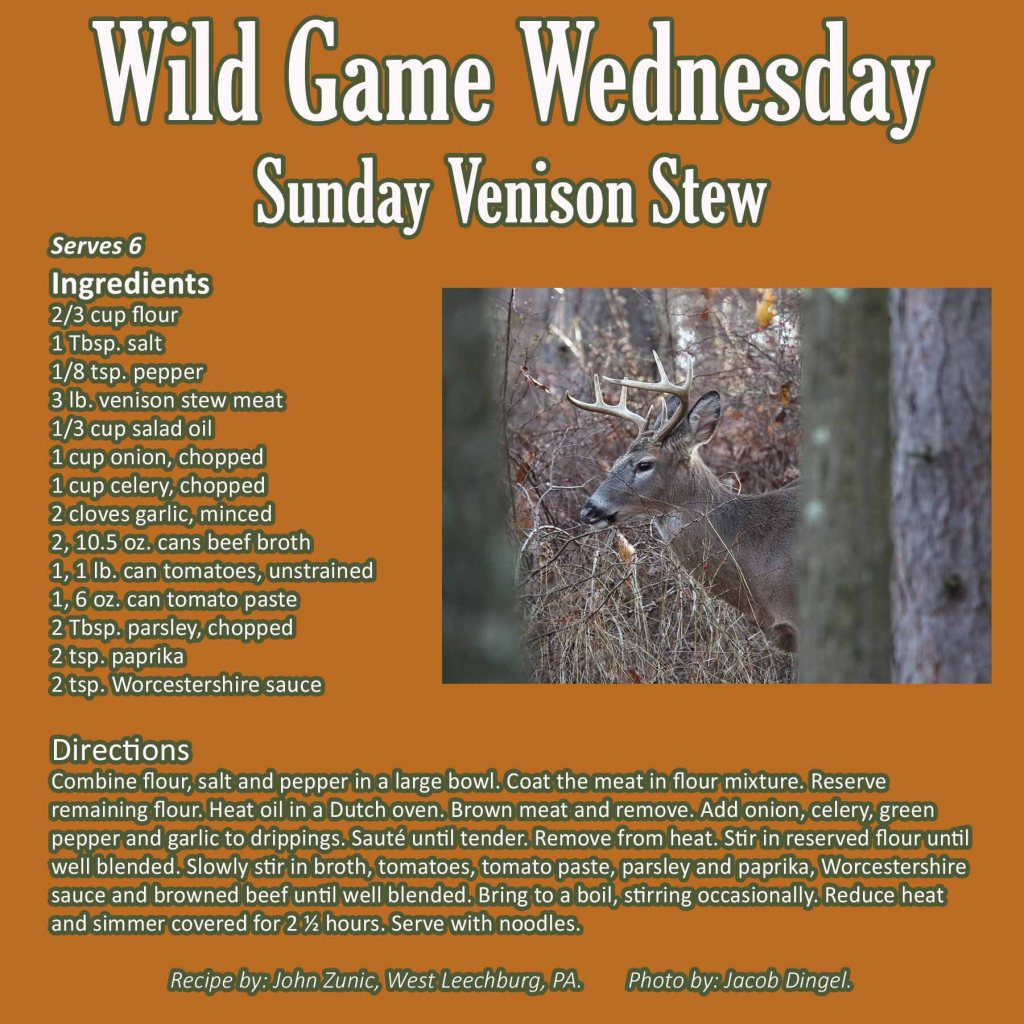 Sunday Venison Stew Graphic