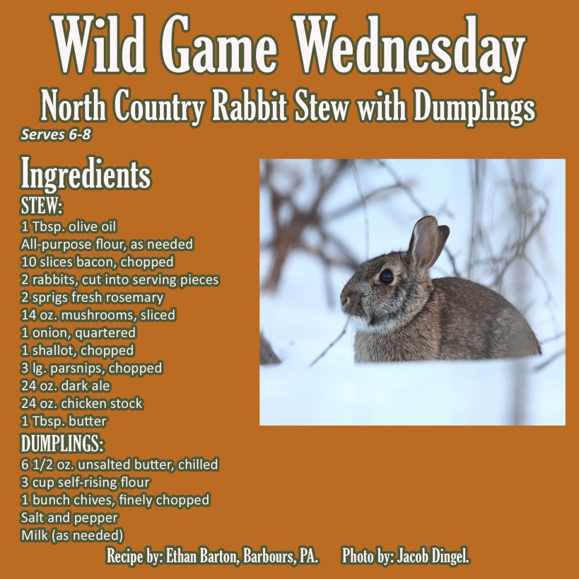North Country Rabbit Stew with Dumplings